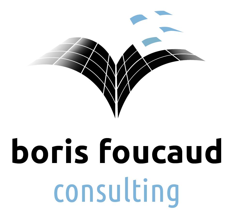Boris Foucaud Consultant